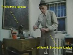 william burroughs idazlea